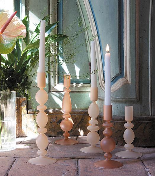 Collection Flora Fauna